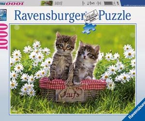 Ravensburger Picnic In The Meadow 1000pc Puzzle