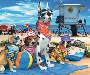 Ravensburger No Dogs on the Beach Puzzle 100 pc