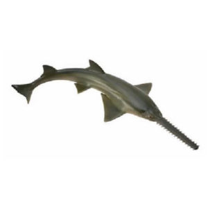 CollectA 88659 Sawfish