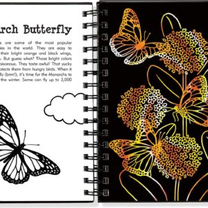 Scratch & Sketch Butterflies & Friends