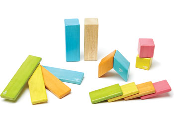 Tegu Magnetic Wooden Blocks Classic 14pc