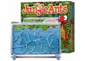 Jungle Ants Ant Farm