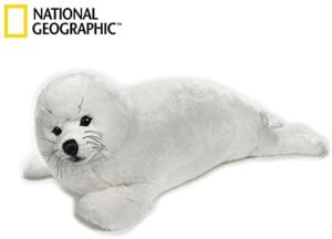 Seal 100cm National Geographic