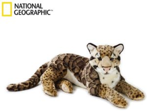 Clouded Leopard 65cm National Geographic